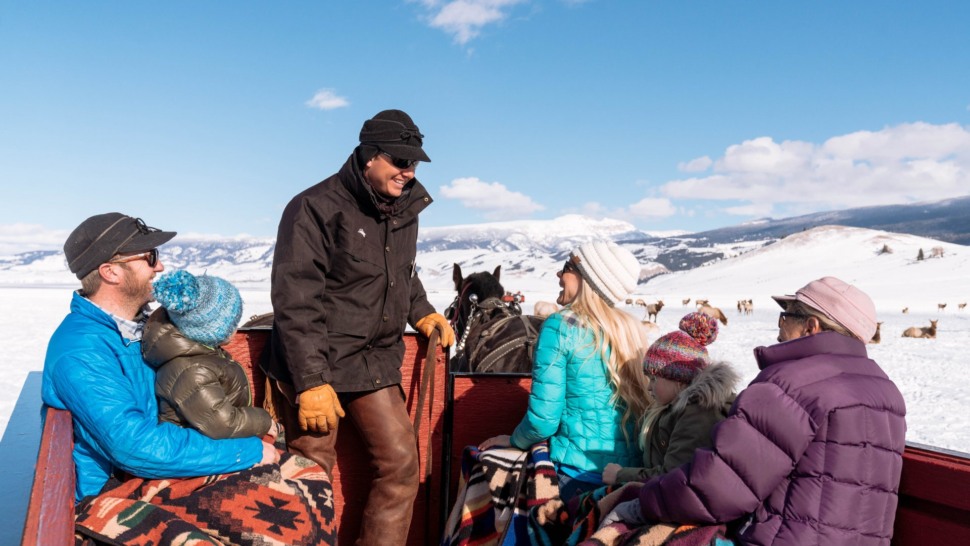 Sleigh Ride on the Elk Refuge