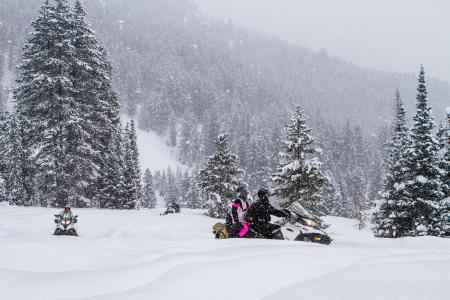 Snowmobiling in the snow