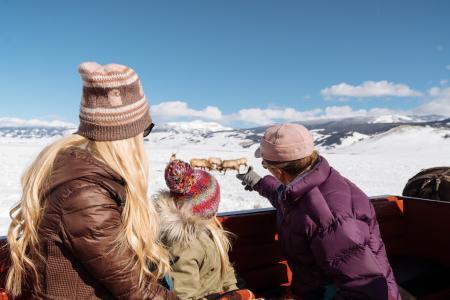 Family on a winter wildlife tour